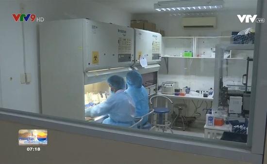 Tết Tân Sửu - Tết đầm ấm nghĩa tình và an toàn dịch bệnh tại TPHCM