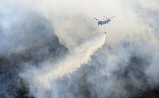 Cháy rừng nghiêm trọng gần thủ đô Tokyo, Nhật Bản