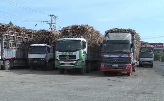 Gia Lai: Xe chở nông sản được phép ra vào vùng dịch