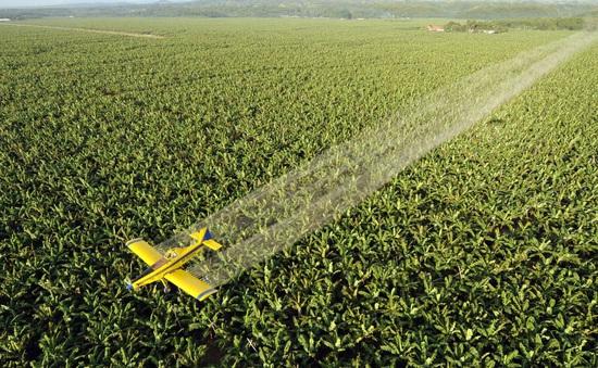 Quan chức Brazil gây sốc vì ý tưởng cho máy bay phun cồn khử trùng