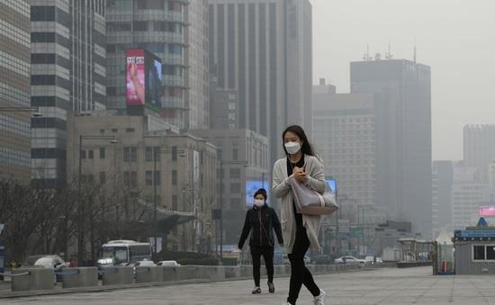Hàn Quốc cung cấp bản đồ chất lượng không khí thời gian thực cho người dân