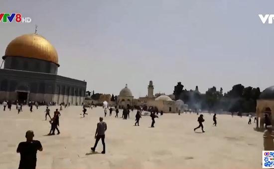 Bạo lực bùng phát tại Jerusalem sau lệnh ngừng bắn