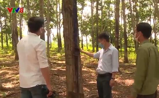 Hàng trăm lao động bị nợ bảo hiểm xã hội tại Đắk Nông