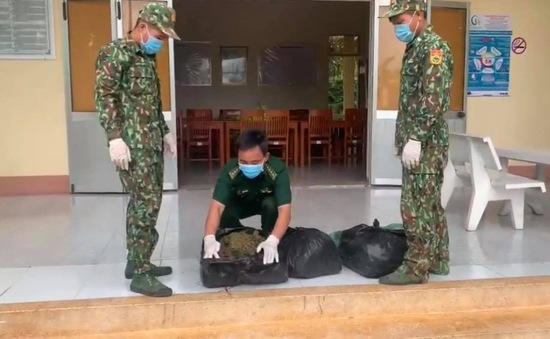 Bắt giữ 13 kg lá khô nghi cần sa vận chuyển từ Campuchia về Việt Nam