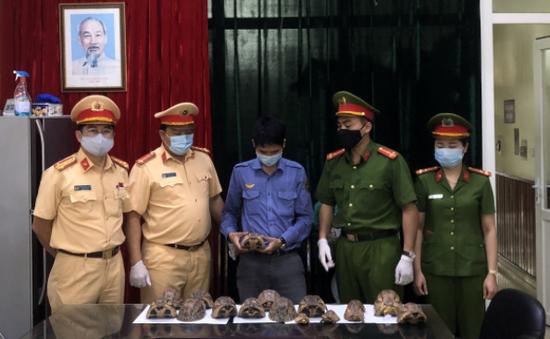 Bắt nhân viên đường sắt vận chuyển 17 cá thể rùa quý hiếm
