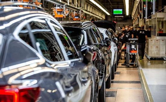 """Hiệu ứng """"roi da"""" trong ngành sản xuất ô tô"""