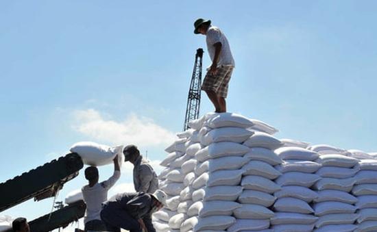 Bùng nổ đường nhập khẩu từ các nước ASEAN, liệu có bất thường?