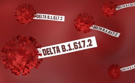 """INFORGRAPHIC: Biến chủng Delta """"đánh thức"""" nỗi lo kéo dài đại dịch COVID-19"""