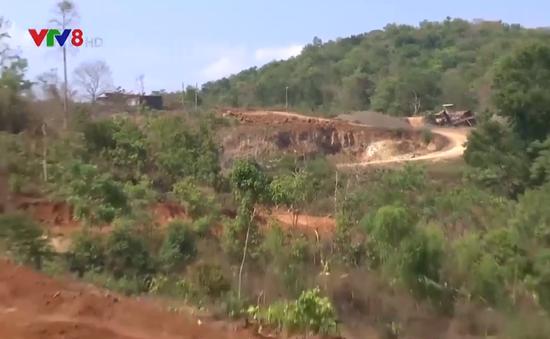 Đắk Lắk: Ngang nhiên hủy hoại đất nông nghiệp