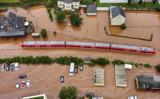 """Lũ lụt ở châu Âu và Trung Quốc """"giáng đòn mạnh"""" lên chuỗi cung ứng toàn cầu"""