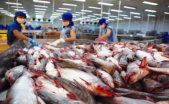 Xuất khẩu sản phẩm cá tra đạt hơn 930 triệu USD
