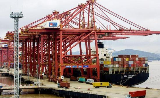 Cảng container lớn thứ 3 thế giới hoạt động trở lại sau dịch