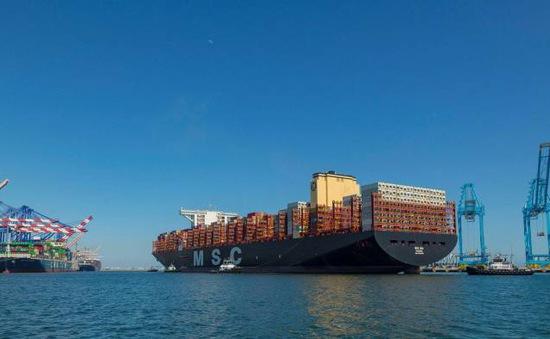 """Ngành vận tải biển lãi """"đậm"""" nhất trong 13 năm"""