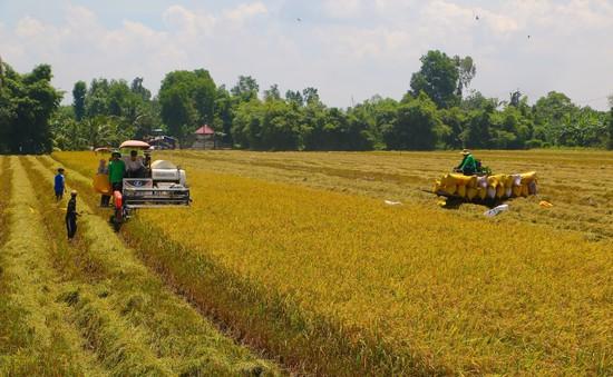Gỡ các nút thắt làm giảm đà tăng trưởng tại Đông Nam Bộ và ĐBSCL