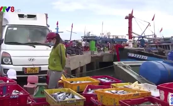 Thừa Thiên-Huế: Đảm bảo chuỗi cung ứng hải sản gắn với phòng chống dịch