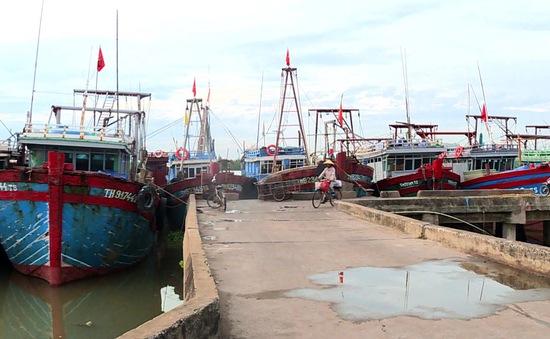 Ứng phó với bão Côn Sơn: Thanh Hóa kêu gọi tàu thuyền vào nơi tránh trú bão an toàn