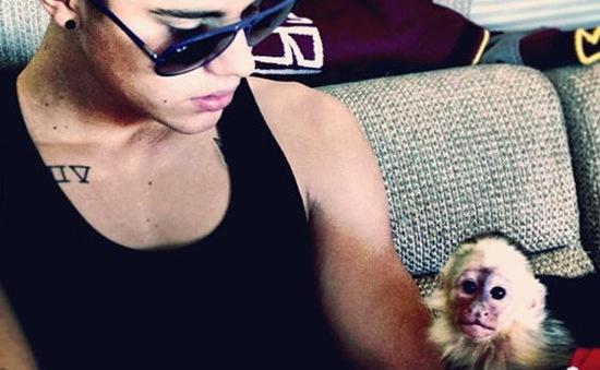 Justin Bieber trì hoãn chuyến bay vì... khỉ