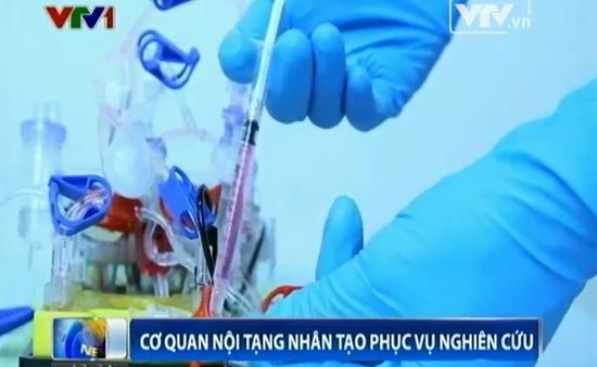 Xây dựng nội tạng nhân tạo để thử nghiệm thuốc