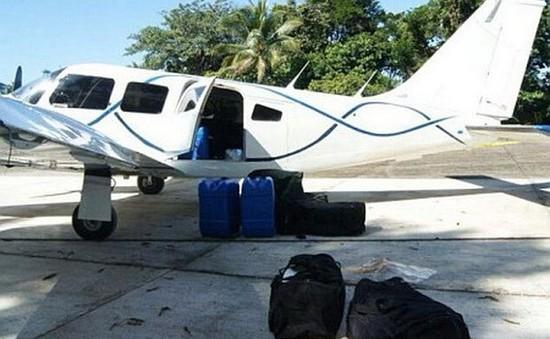 Guatemala bắt giữ nửa tấn cocaine