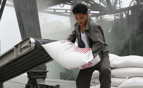 Giám đốc WFP tới Triều Tiên thảo luận chương trình viện trợ lương thực