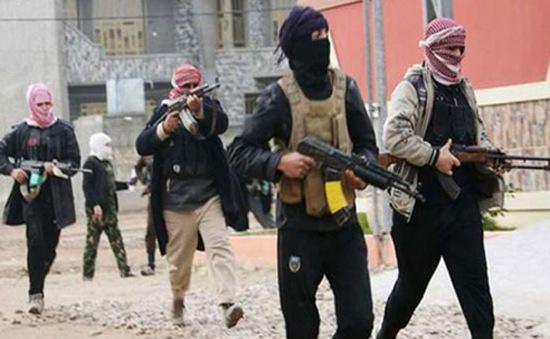 Cộng đồng quốc tế lo ngại về tình hình Iraq