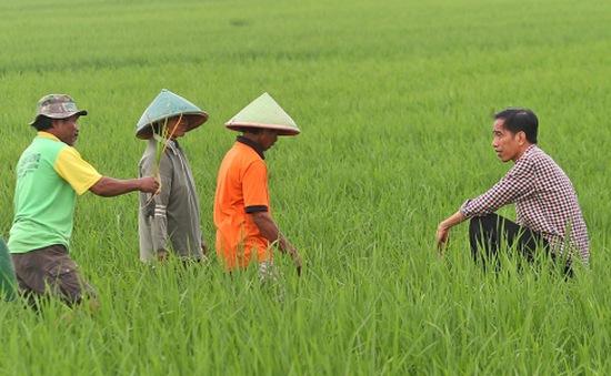 Người dân Indonesia đặt hy vọng vào ông Widodo