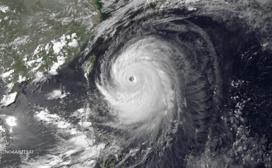 Nhật Bản: Bão Neoguri tàn phá Okinawa