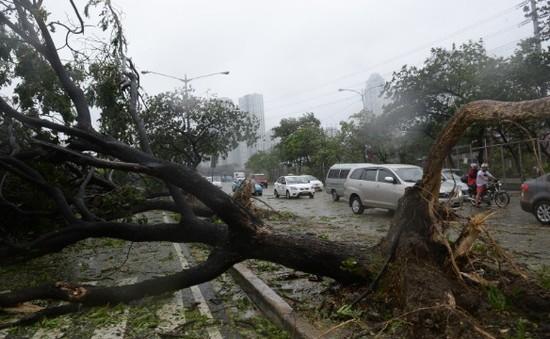 Người dân Philippines gồng mình trước siêu bão Rammasun