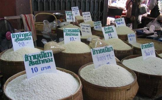 Thái Lan hoãn đấu thầu 500.000 tấn gạo
