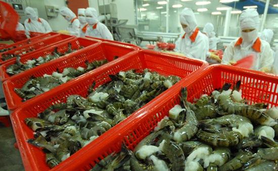 Nhật Bản lại siết kiểm tra kháng sinh trên tôm Việt Nam