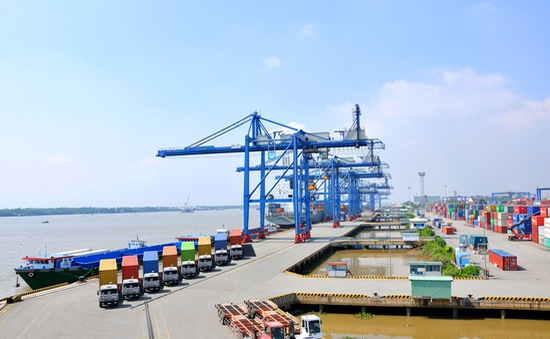 Bộ GTVT làm việc với cảng Cát Lái giải quyết tình trạng hàng ùn ứ