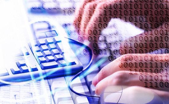 Doanh nghiệp nội giữ ưu thế trong thương mại điện tử