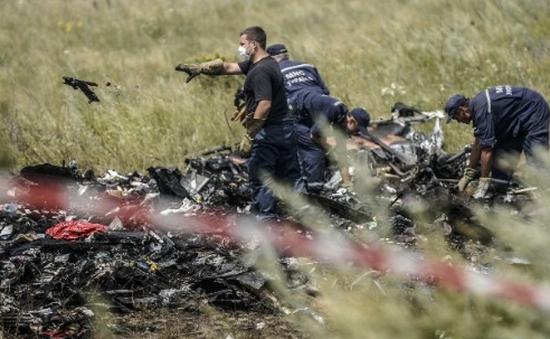 Chuẩn bị nhận dạng thi thể nạn nhân vụ rơi máy bay MH17