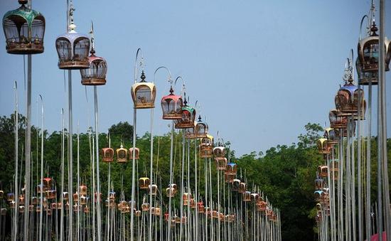 Độc đáo lễ hội chim hót tại Thái Lan