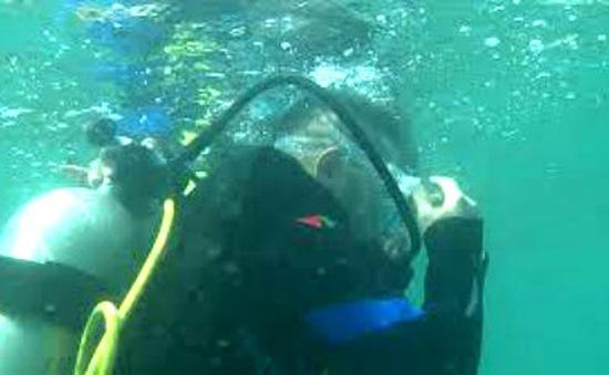 Lặn biển quay phim ở Trường Sa