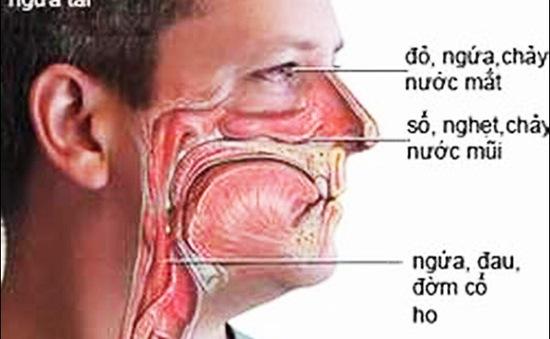 Cẩn thận với những bệnh dị ứng hay gặp