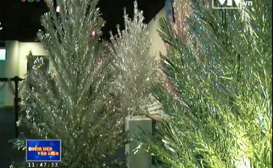 Người Mỹ chuộng cây thông Giáng sinh bằng nhôm