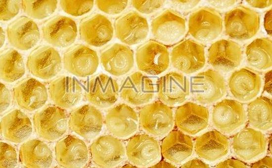 Lợi ích của sáp ong với làn da