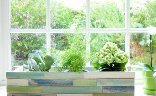 """Trang trí cửa sổ với """"vườn treo""""  tự tạo"""