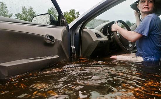 Kỹ năng thoát nạn khi ô tô ngập nước