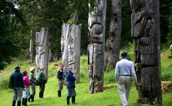 Nhiều cây khổng lồ ở công viên quốc gia Gwaii Haanas, Canada