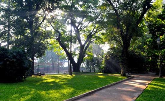 Khu vườn cổ trong lòng thành phố