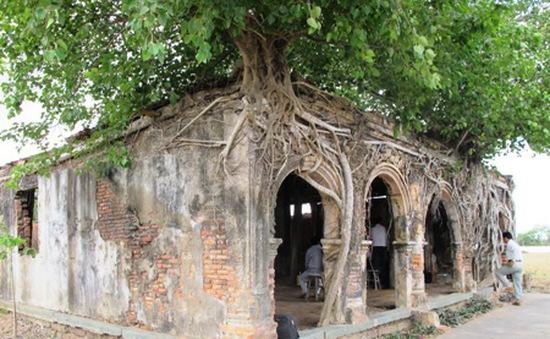Ngôi đình cổ nằm trong cây bồ đề