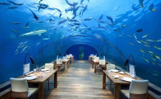 10 nhà hàng kỳ lạ nhất thế giới