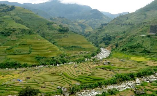 Lào Cai tưng bừng kỷ niệm 110 năm du lịch Sa Pa