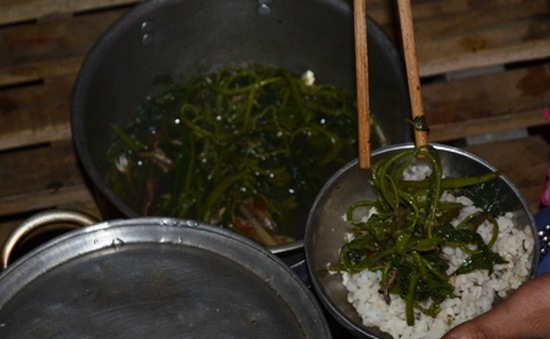 Ăn cơm với rau dại, măng rừng nuôi giấc mơ tìm chữ