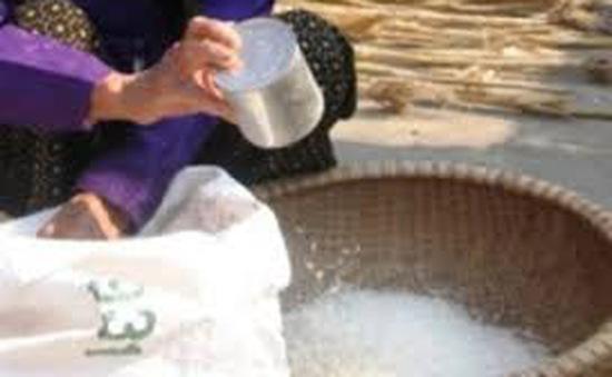Quảng Trị: Xử lý sai phạm trong việc cấp phát gạo cứu đói