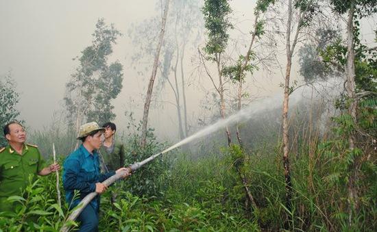 Gần 34.000ha rừng tràm ở Cà Mau có nguy cơ cháy cao
