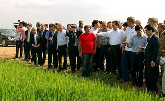 Hợp tác nông nghiệp Việt Nam - Cuba