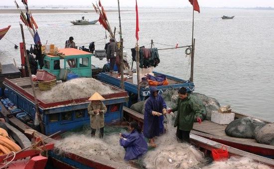 Ngư dân vững tâm bám biển, tiếp tục tăng gia sản xuất